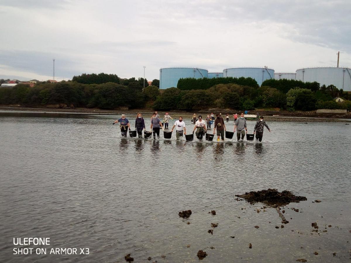 Mariscadores a pé